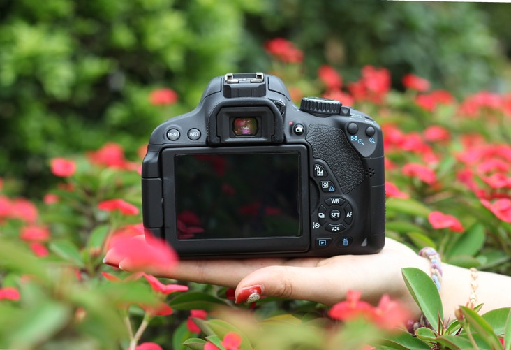 Camera for Jewelry Photography